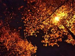 night in falltime