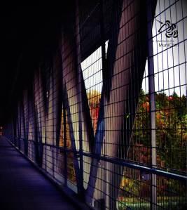 Grosshesseloher Brücke