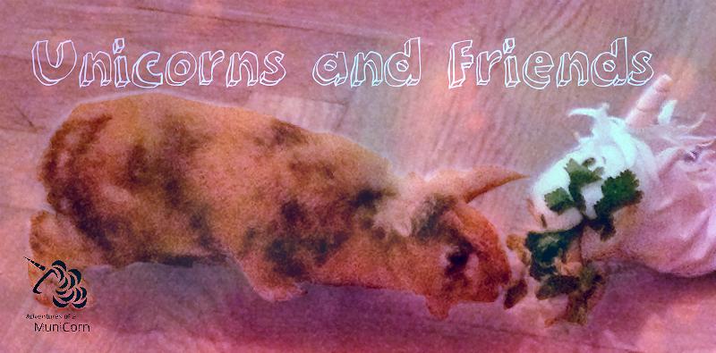 Unicorns and friends.jpg