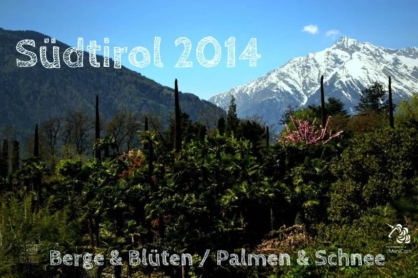 Municorn goes Südtirol