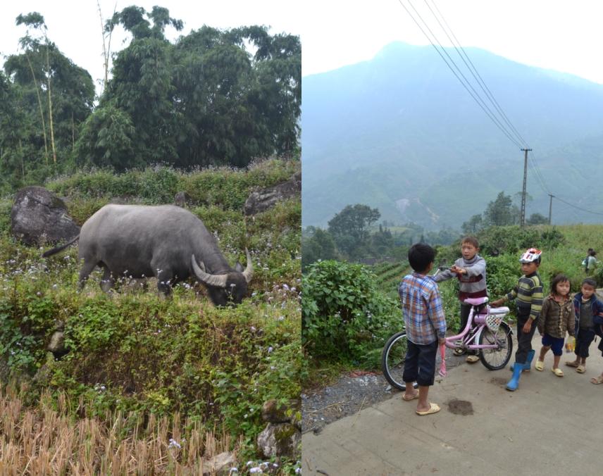 village kids near Sa Pa