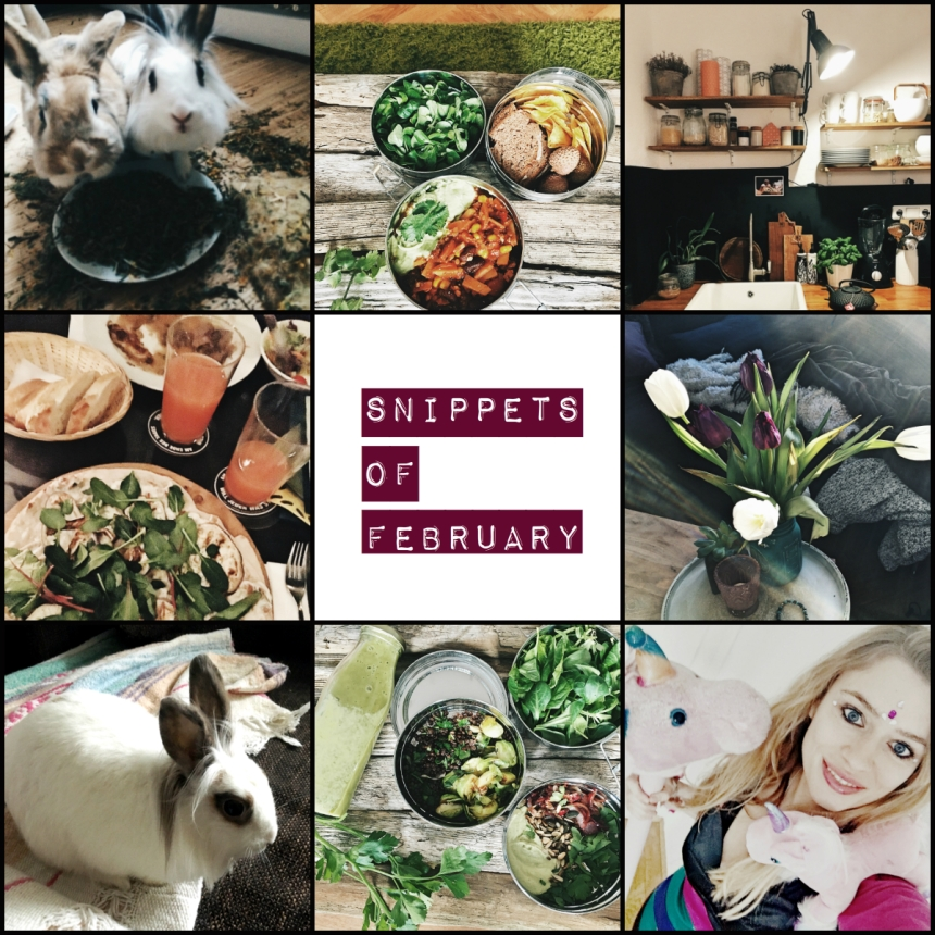 snippets of february