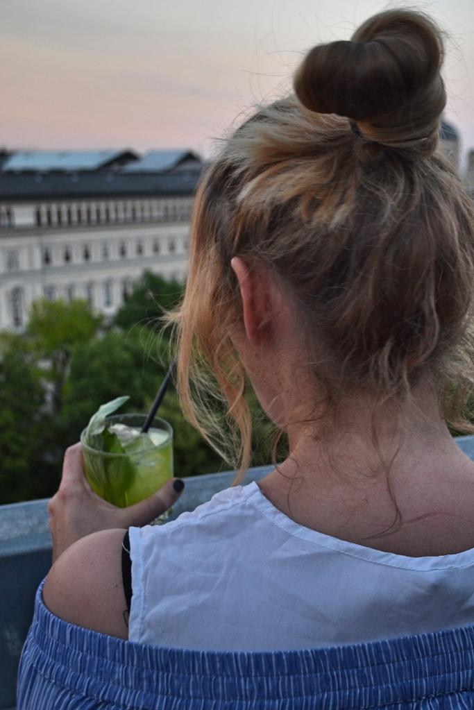 drinks over vienna