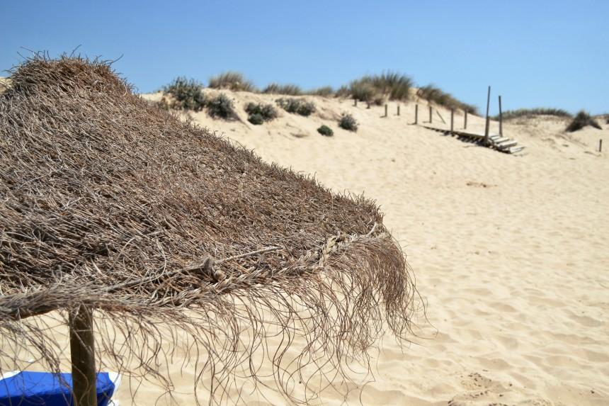 praia-do-amoreira-costa-vicentina-aljezur