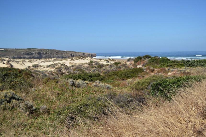 wild-nature-costa-vicentina-algarve-near-aljezur-praia-amoreira