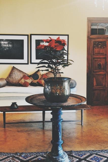nice-design-boutique-villa-central-sri-lanka