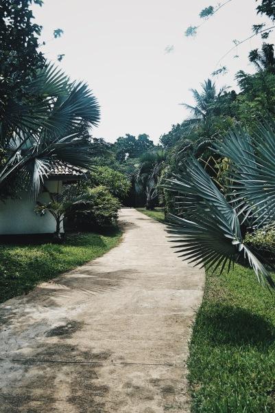 anlage-little-tamarind-sri-lanka